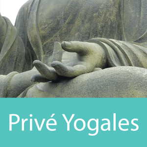 Yoga-Essence-Prive-Yogales